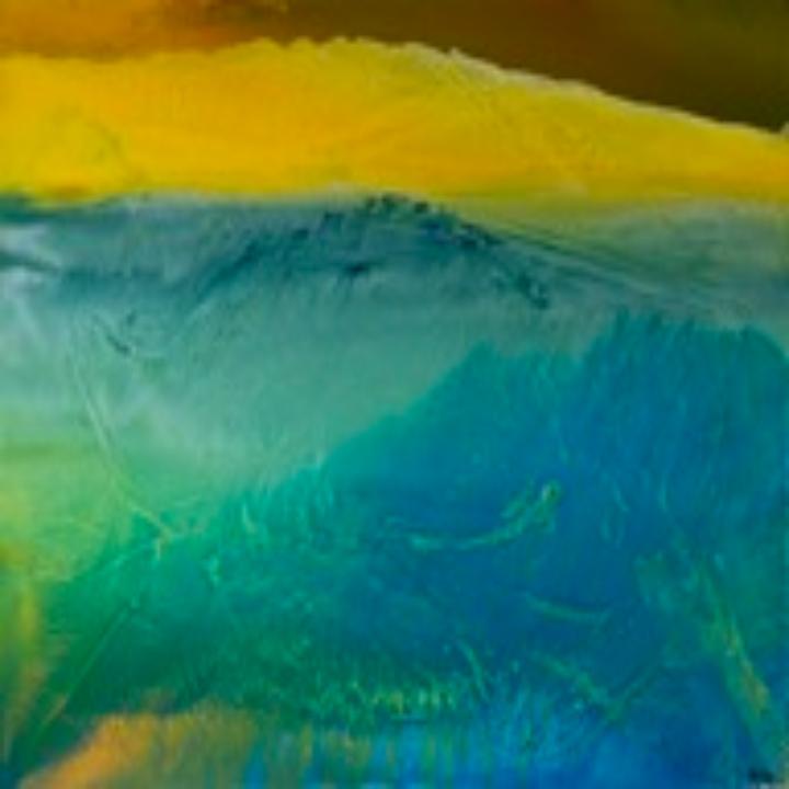 Marcia Evans Gallery