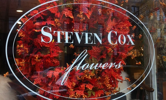 steven cox