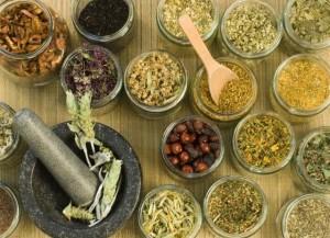 Herb Wellness